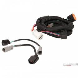 Harness, Ford (4R70W/75W 98-up)
