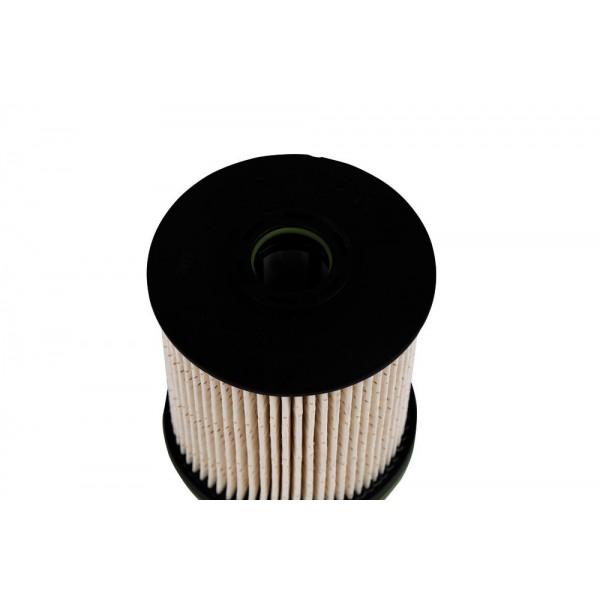 Fuel Filter Kit