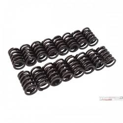 VALVE SPRINGS, E-STREET HEADS SET OF 16